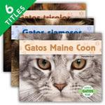 Gatos - Meredith Dash