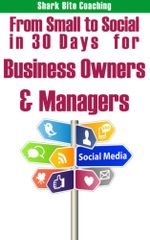 From Small to Social in 30 Days for Business Owners & Managers : Establish Your Social Media Program One Day at a Time - Cassandra Fenyk
