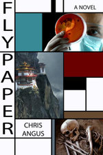 Flypaper : A Novel - Chris Angus