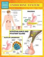 Endocrine System (Speedy Study Guides) - Speedy Publishing LLC