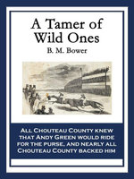 A Tamer of Wild Ones - B. M. Bower