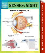 Senses : Sight Speedy Study Guides - Speedy Publishing