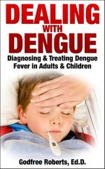 Dealing with Dengue : Diagnosing, Treating, and Recovering from Dengue Fever - Godfree Ed D. Roberts