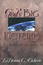 God's Big Picture : Finding Yourself In God's Plan - Dr. LaDonna C. Osborn