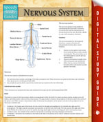 Nervous System : Speedy Study Guides - Speedy Publishing