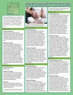 Pregnancy Guides : Stages of Pregnancy Development - Jyoti Baluran