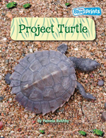 Project Turtle : Rigby Blueprints Upper Primary Unit A2 There's More To Me - Rushby Pamela