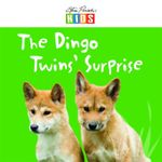 The Dingo Twins' Surprise - Catherine Prentice