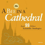 A Bee in a Cathedral : And 99 Other Scientific Analogies - Joel Levy