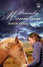 Brumby Mountain : Diamond Spirits Series : Book 5 - Karen Wood