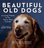 Beautiful Old Dogs : A Loving Tribute to Our Senior Best Friends