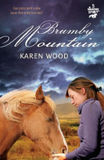 Brumby Mountain : Diamond Spirits Series : Book 5 - Karen Wood