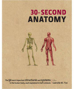 30-Second Anatomy - Gabrielle Finn