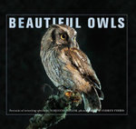 Beautiful Owls - Marianne Taylor