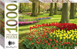 Springtime tulips, Holland  : 1000 Piece Jigsaw