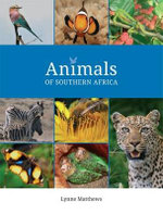 Animals of Southern Africa : Insects and Invertebrates; Mammals; Birds; Frogs and Reptiles; Marine Life - Lynne Matthews