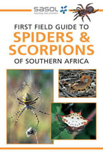 Sasol First Field Guide to Spiders & Scorpions of Southern Africa - Tracey Hawthorne