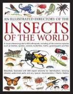 Illustrated Directory of Insects of the World : A Visual Reference Guide to 650 Arthropods, Including All the Common Species Such as Beetles, Spiders, Crickets, Butterflies, Moths, Grasshoppers and Flies - Martin Walters