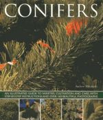 Conifers : An Illustrated Guide to Varities, Cultivation and Care, with Step-by-step Instructions and Over 160 Beautiful Photographs - Andrew Mikolajski