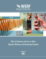 Effect of Aluminum and Iron on Odors : Werf Report 03-Cts-9b - John T. Novak