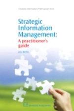 Strategic Information Management : A Practitioner's Guide - Jela Webb