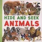 Hide & Seek Animals : Giant Books