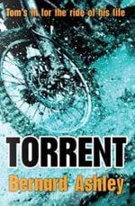 Torrent - Bernard Ashley