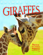 Animal Lives : Giraffes - Sally Morgan