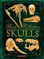 Bone Collection - Skulls - Rob Colson