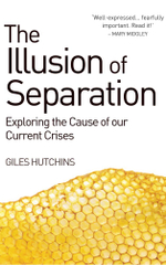 Illusion of Separation : Exploring the Cause of our Current Crises - Giles Hutchins