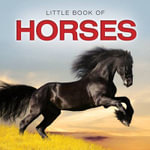 Little Book of Horses - Jon Stroud