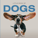 Little Book of Dogs - Jon Stroud