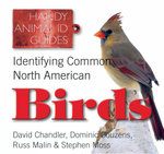 Identifying Common North American Birds : Handy Petcare Guides - Russ Malin