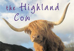 The Highland Cow : Series I - Crimson Tears - Kenny Taylor
