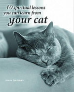 10 Spiritual Lessons You Can Learn from Your Cat - Joanna Sandsmark