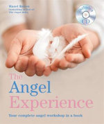The Angel Experience : Your Complete Angel Workshop in a Book - Hazel Raven