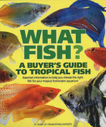What Fish? : A Buyer's Guide to Tropical Fish - Mary Bailey