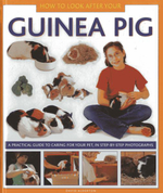 How to Look After Your Guinea Pig : A Practical Guide to Caring for Your Pet, in Step-by-step Photographs - David Alderton