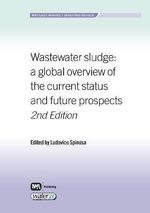 Wastewater Sludge : A Global Overview of the Current Status and Future Prospects
