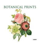 Botanical Prints - Sandra Forty