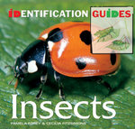 Insects : Identification Guide - Pamela Forey