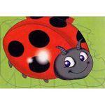 Ladybird : Chunky Animals - Sheryl Bone