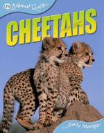 Cheetahs : Animal Lives - Sally Morgan