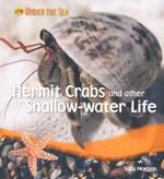 Hermit Crabs and Other Shallow-water Life : Under The Sea - Sally Morgan
