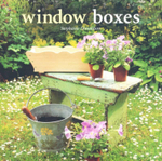 Window Boxes - Stephanie Donaldson