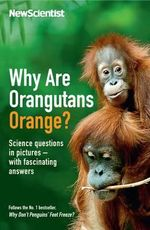 Why are Orangutans Orange? : Science puzzles in pictures - with fascinating answers - New Scientist