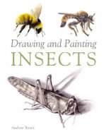 Drawing and Painting Insects : The Bicycle Illustrations of Daniel Rebour - Andrew Tyzack