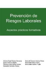 Prevencin de Riesgos Laborales : Aspectos Prcticos Formativos :  Aspectos Prcticos Formativos - Mar a Isabel Marco Galve