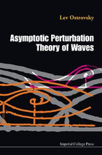 Perturbation Theories and Nonlinear Waves - Konstantin Gorshkov