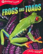 Frogs and Toads : Animal Lives - Sally Morgan
